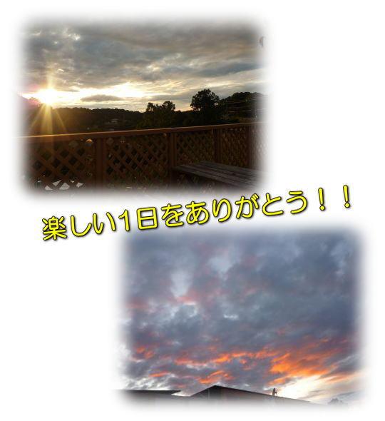 image30_20111205233305.jpg