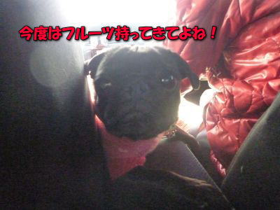 image3_20120121025113.jpg