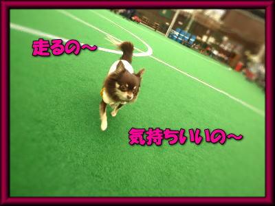 image4_20120309203727.jpg