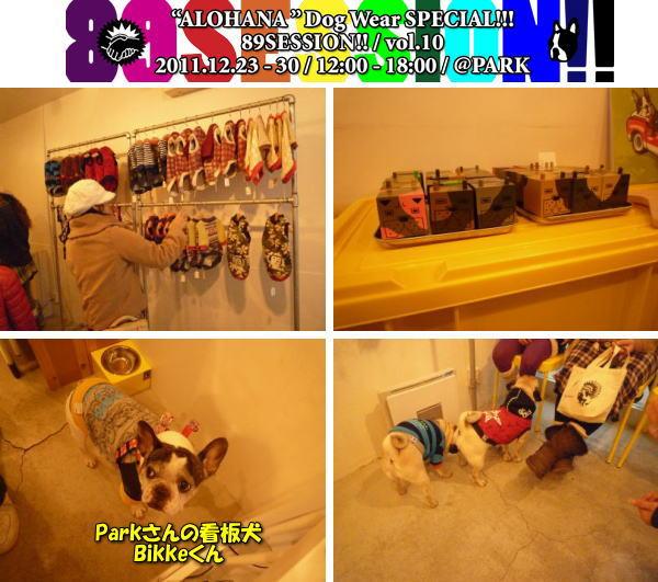 image5_20111227223731.jpg