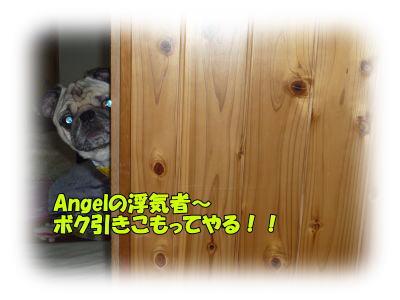 image5_20120115024006.jpg