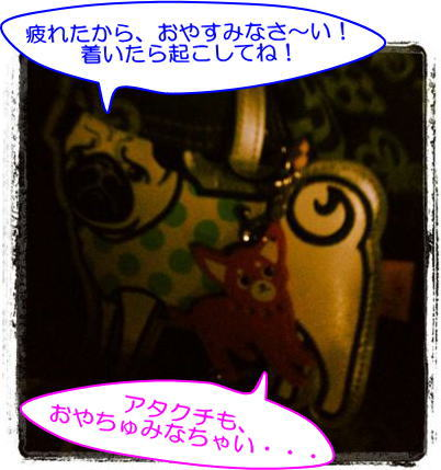 image6_20111114030905.jpg