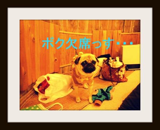 image6_20120119154339.jpg
