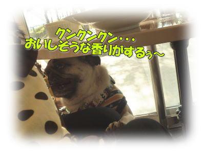 image7_20111104011029.jpg