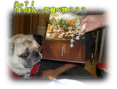 image7_20111110142907.jpg