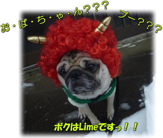 image7_20120204000905.jpg
