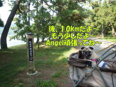 image8_20111002013933.jpg