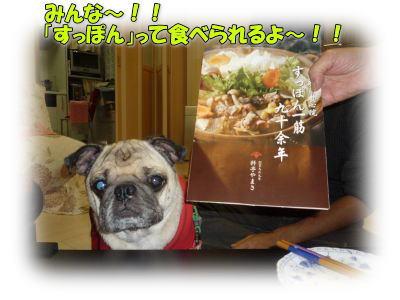 image8_20111110142907.jpg