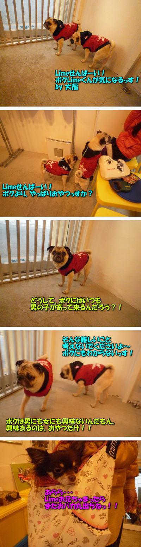 image8_20111227225733.jpg