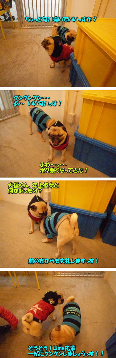 image9_20111227230927.jpg