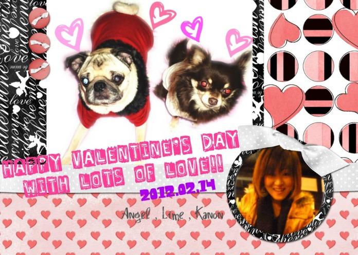 valentine20120214s.jpg