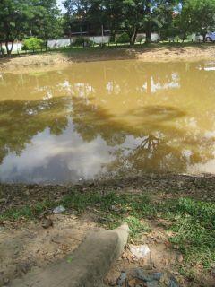 洪水11月9日06