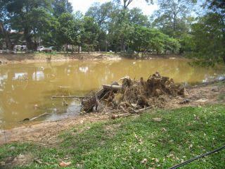 洪水11月9日03