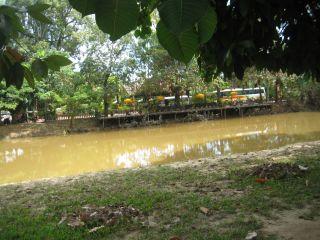 洪水11月9日08