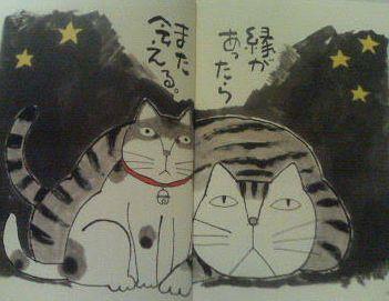 cat_hajime