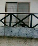 20060430215110