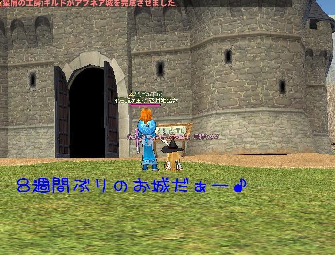 2012022829_お城返り咲き