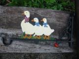 宝物duck