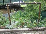 造成中花壇設置後