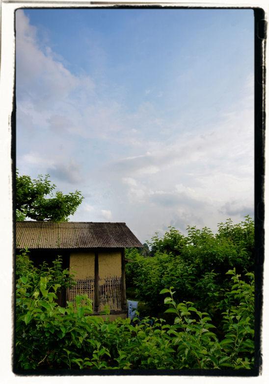 20110602_362a.jpg