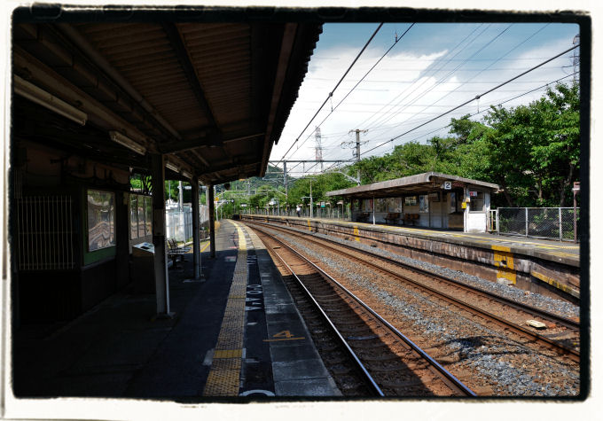 20110728_378a.jpg