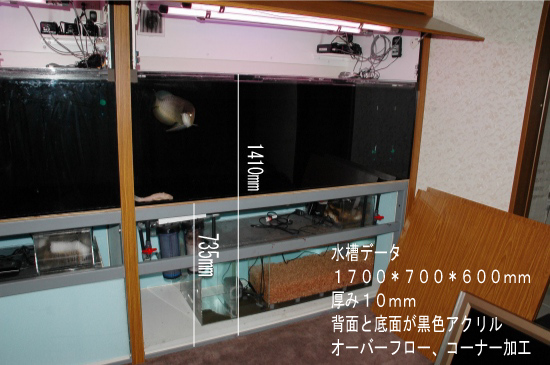 s-DSC_8425.jpg