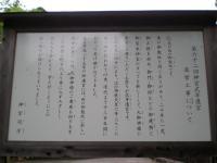 DSCN3174.jpg