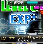 Maple120331_170545.jpg