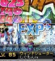 Maple120414_154728.jpg