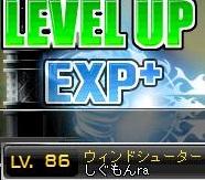 Maple120414_155648.jpg
