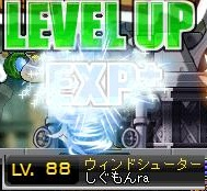 Maple120414_162741.jpg