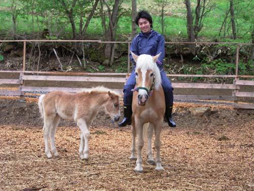 QMでの体験乗馬