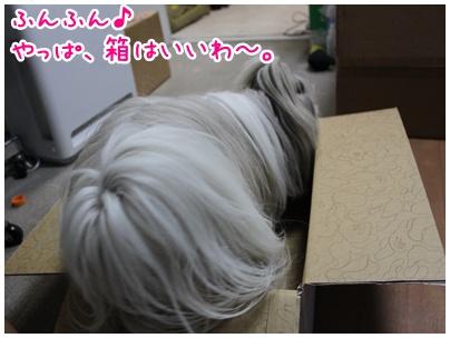 2011-05-29-01.jpg