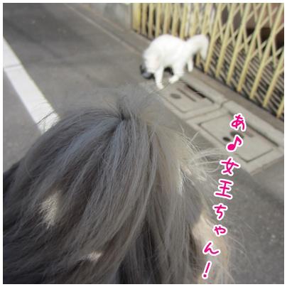 2011-06-07-01.jpg