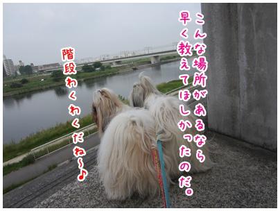 2011-06-09-01.jpg