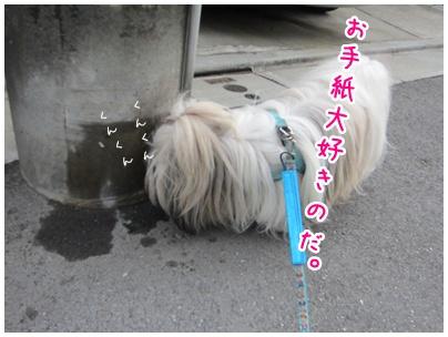 2011-06-12-03.jpg