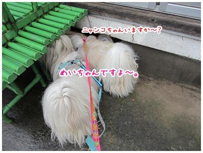 2011-06-16-02.jpg