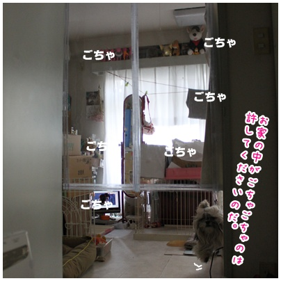 2011-06-23-01.jpg