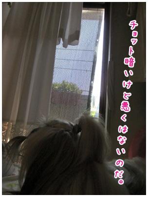 2011-06-23-04.jpg