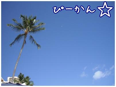 2011-07-09-03.jpg