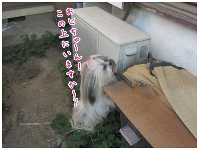 2011-07-19-07.jpg