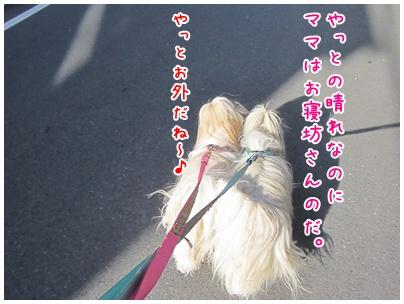 2011-07-22-01_20110722102732.jpg
