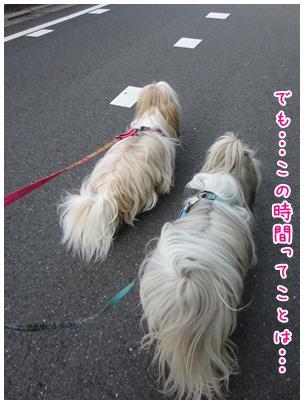 2011-07-22-02_20110722102732.jpg