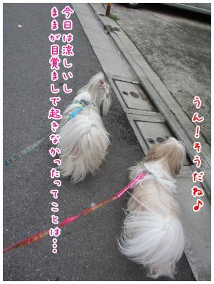 2011-08-01-01.jpg