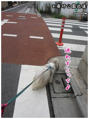 2011-08-01-03.jpg