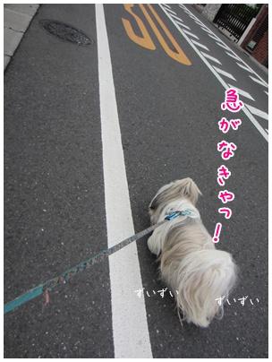 2011-08-01-04.jpg