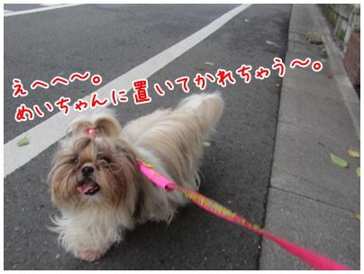 2011-08-01-07.jpg