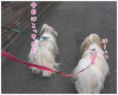 2011-08-05-04.jpg