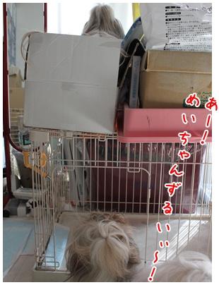 2011-08-06-02.jpg