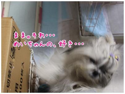 2011-08-09-06.jpg